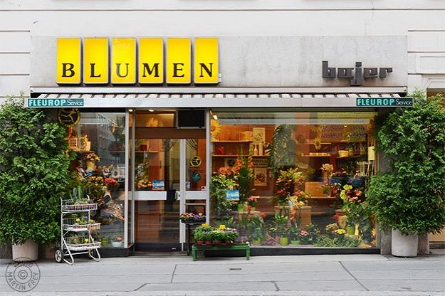 Blumen Bajer: 1030 Wien
